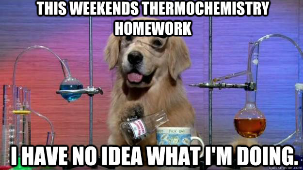This weekends Thermochemistry homework I have no idea what i'm doing.