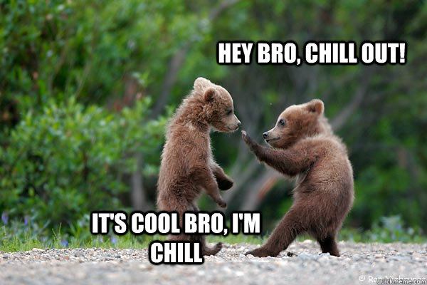 Hey bro, Chill out! It's cool bro, I'm Chill - Hey bro, Chill out! It's cool bro, I'm Chill  Chill out bro!