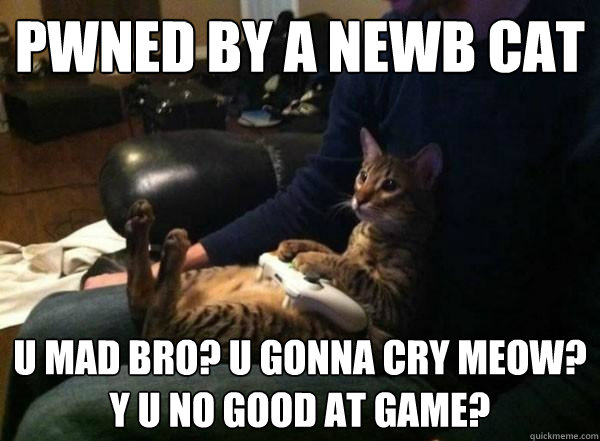 pwned by a newb cat u mad bro? U gonna cry meow? y u no good at game?