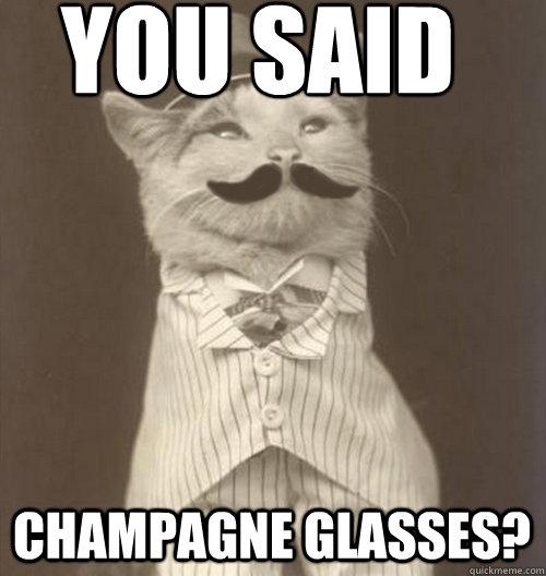 afae9935bf98ce4248d1c72724d5c421b4b9e63f19883d631193563137f73eaa you said champagne glasses? original business cat quickmeme