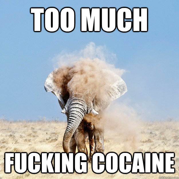 Too much fucking cocaine - Too much fucking cocaine  Misc