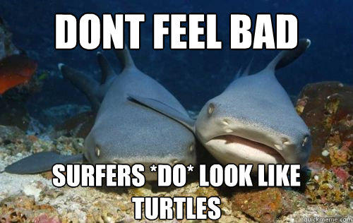 dont feel bad surfers *do* look like turtles - dont feel bad surfers *do* look like turtles  Compassionate Shark Friend