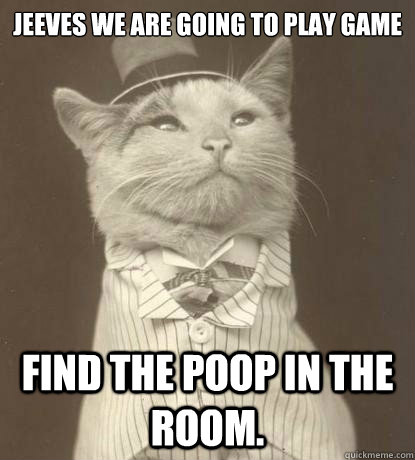 Jeeves we are going to play game Find the poop in the room. - Jeeves we are going to play game Find the poop in the room.  Aristocat