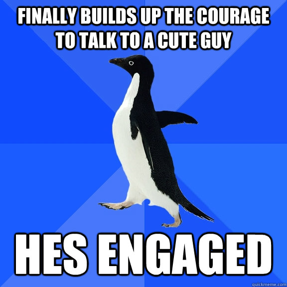 Finally builds up the courage to talk to a cute guy hes engaged - Finally builds up the courage to talk to a cute guy hes engaged  Socially Awkward Penguin