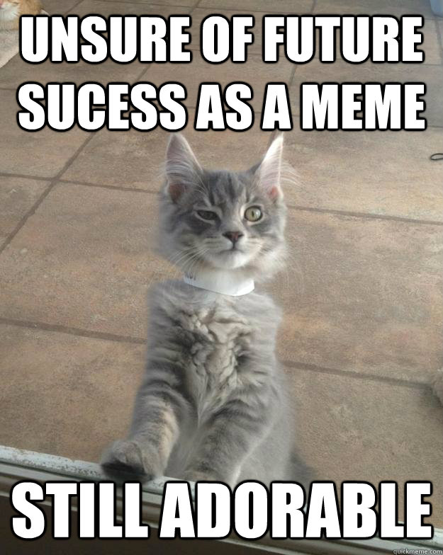Unsure of future sucess as a meme Still Adorable