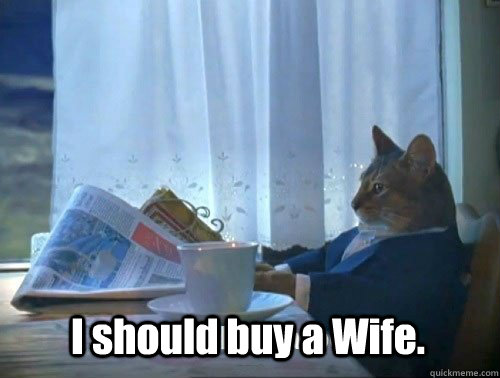 I should buy a Wife. - I should buy a Wife.  Fancy Cat
