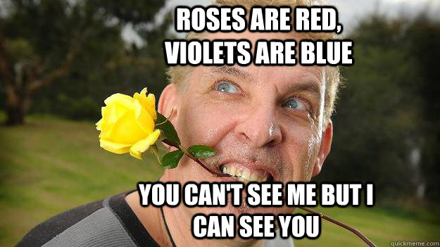 Roses are red, violets are blue you can't see me but i can see you