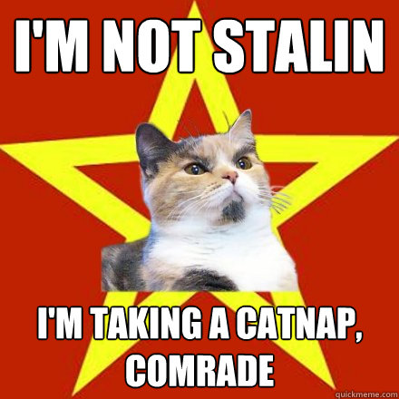 I'm not Stalin I'm taking a catnap, comrade - I'm not Stalin I'm taking a catnap, comrade  Lenin Cat