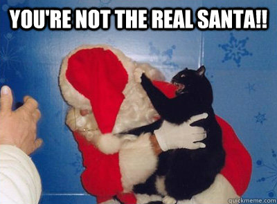 You're not the real santa!! - You're not the real santa!!  Santa