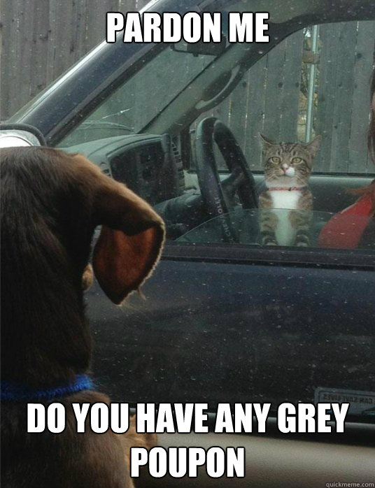 PARDON ME do you have any grey poupon