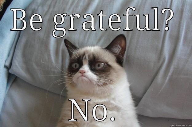 b032fd011228224d1b120678cee4be935c30dc39a73e546b60f46a028d50b047 attitude of gratitude quickmeme