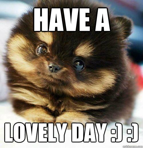 b043bcba8563cdf804257d71d06d3456ad038ad61cb900d1409e69c707b6b099 have a lovely day ) ) brainlessly cute quickmeme