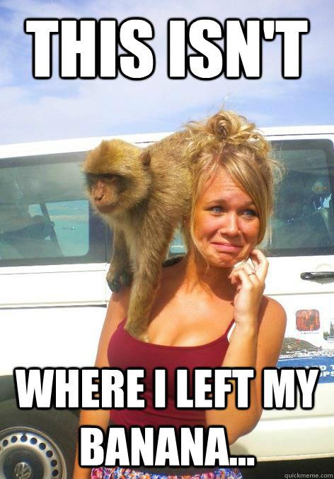 This Isn T Where I Left My Banana Smart Monkey Quickmeme