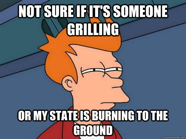 Not sure if it's someone grilling Or my state is burning to the ground - Not sure if it's someone grilling Or my state is burning to the ground  Futurama Fry