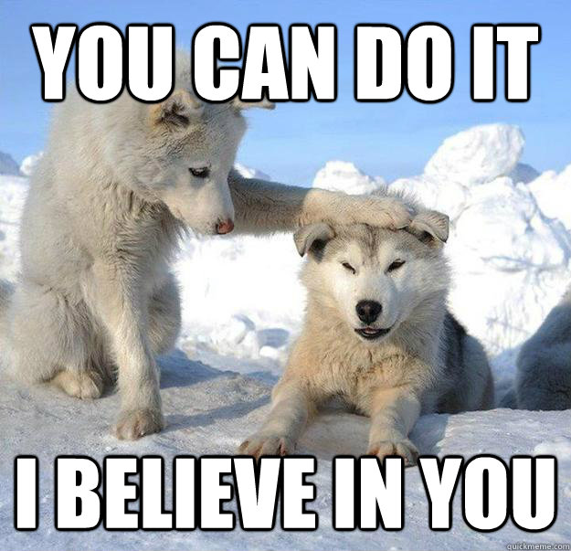 you can do it i believe in you - you can do it i believe in you  Caring Husky