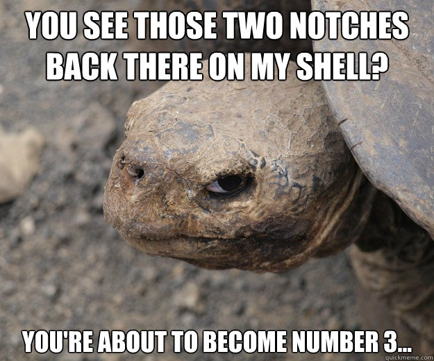 You see those two notches back there on my shell? You're about to become number 3...