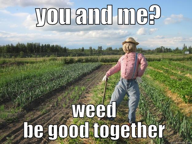 YOU AND ME?        WEED BE GOOD TOGETHER Scarecrow