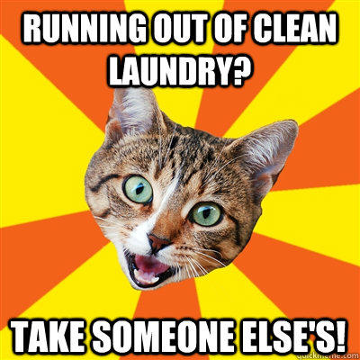 RUNNING OUT OF CLEAN LAUNDRY? TAKE SOMEONE ELSE'S! - RUNNING OUT OF CLEAN LAUNDRY? TAKE SOMEONE ELSE'S!  Bad Advice Cat