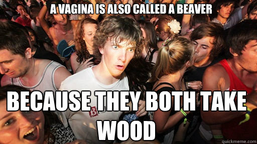 A vagina is also called a Beaver Because they both take wood - A vagina is also called a Beaver Because they both take wood  Sudden Clarity Clarence