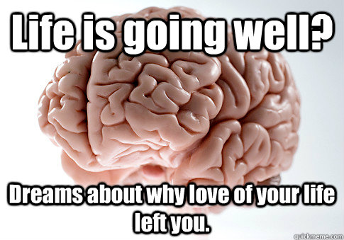 Life is going well? Dreams about why love of your life left you.  - Life is going well? Dreams about why love of your life left you.   Scumbag Brain