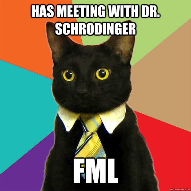 Has meeting with Dr. Schrodinger FML - Has meeting with Dr. Schrodinger FML  Business Cat