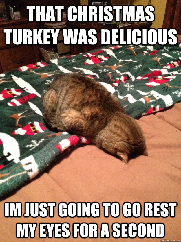 That christmas turkey was delicious Im just going to go rest my ...