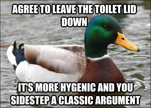 Agree to leave the toilet lid down It's more hygenic and You sidestep a classic argument - Agree to leave the toilet lid down It's more hygenic and You sidestep a classic argument  Actual Advice Mallard