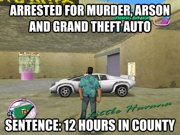 arrested for murder, arson and grand theft auto  sentence: 12 hours in county - arrested for murder, arson and grand theft auto  sentence: 12 hours in county  GTA LOGIC