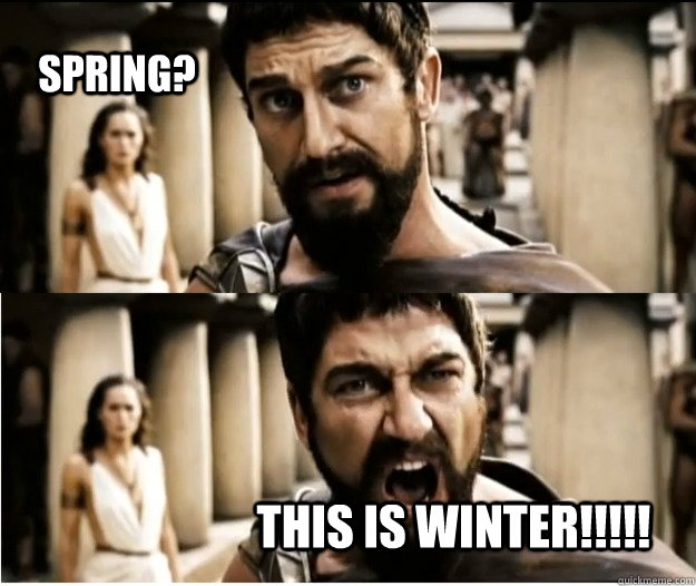 Spring? this is winter!!!!!