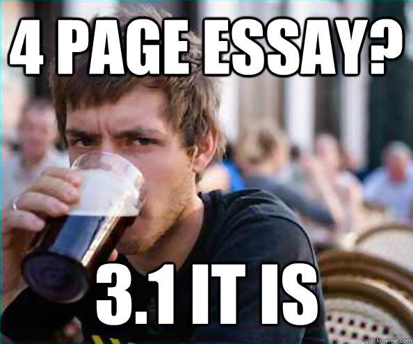 20 page essay