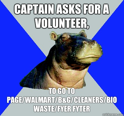 Captain asks for a volunteer, To go to page/walmart/B&G/cleaners/bio waste/fyer fyter  Skeptical Hippo