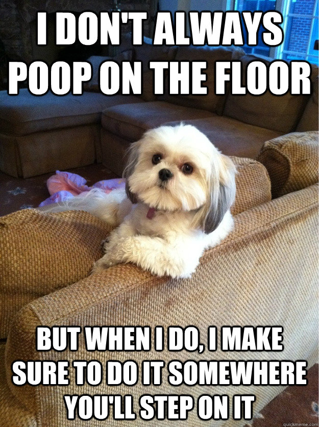 I don't always poop on the floor but when i do, i make sure to do it somewhere you'll step on it