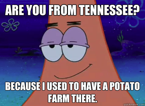 are you from Tennessee? because i used to have a potato farm there.