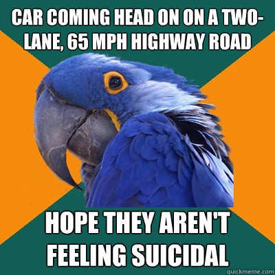 car coming head on on a two-lane, 65 mph highway road hope they aren't feeling suicidal - car coming head on on a two-lane, 65 mph highway road hope they aren't feeling suicidal  Paranoid Parrot