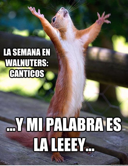 ...y mi palabra es la leeey... La semana en walnuters: canticos  Hallelujah Squirrel