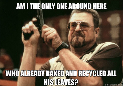 Am I the only one around here who already raked and recycled all his leaves? - Am I the only one around here who already raked and recycled all his leaves?  Am I the only one