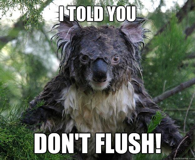 I TOLD YOU DON'T FLUSH!