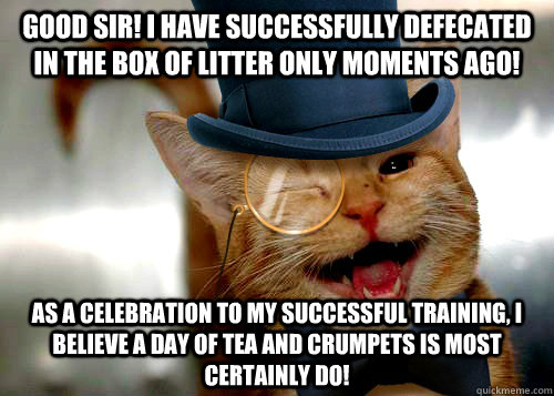Good Sir! I have successfully defecated in the box of litter only moments ago! As a celebration to my successful training, I believe a day of Tea and Crumpets is most certainly do! - Good Sir! I have successfully defecated in the box of litter only moments ago! As a celebration to my successful training, I believe a day of Tea and Crumpets is most certainly do!  Misc