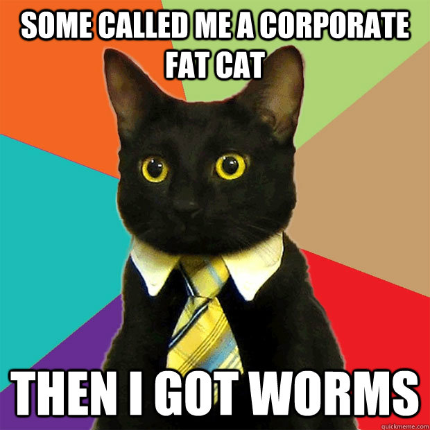 Some called me a corporate fat cat Then I got worms  Business Cat