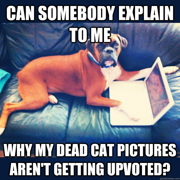 can somebody explain to me why my dead cat pictures aren't getting upvoted?