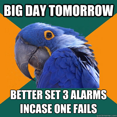 Big day tomorrow Better set 3 alarms incase one fails - Big day tomorrow Better set 3 alarms incase one fails  Paranoid Parrot