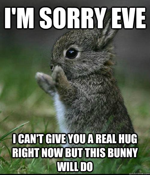 b24d554b3159987286693e9f0c042e817c38a5e0bd8cff88f688c4f374f70ef5 im sorry bunny memes quickmeme,Im Sorry Meme