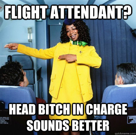 Image result for airhostess memes