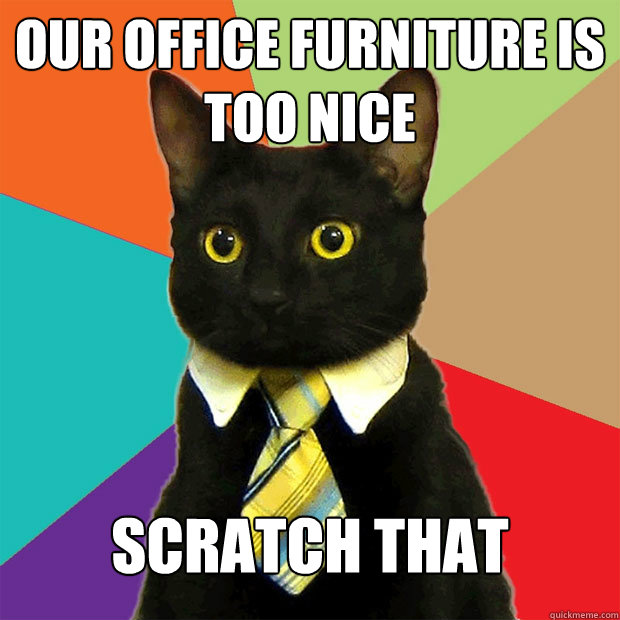 Our office furniture is too nice scratch that - Our office furniture is too nice scratch that  Business Cat