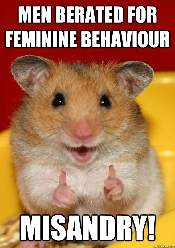 Men berated for feminine behaviour Misandry!  - Men berated for feminine behaviour Misandry!   Rationalization Hamster