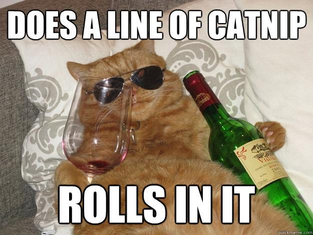 Does a line of catnip rolls in it