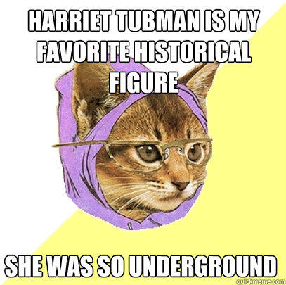 harriet tubman is my favorite historical figure she was so underground - harriet tubman is my favorite historical figure she was so underground  Hipster Kitty