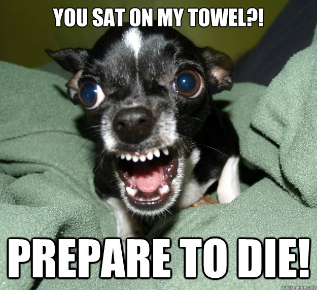 you sat on my towel?! prepare to die!