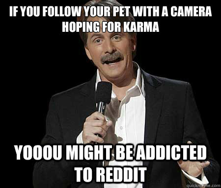 If you follow your pet with a camera hoping for karma Yooou might be addicted to reddit