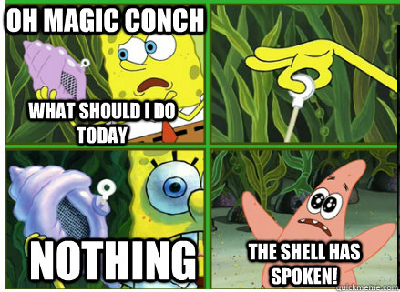 Oh Magic Conch NOTHING The SHELL HAS SPOKEN! What should i do today